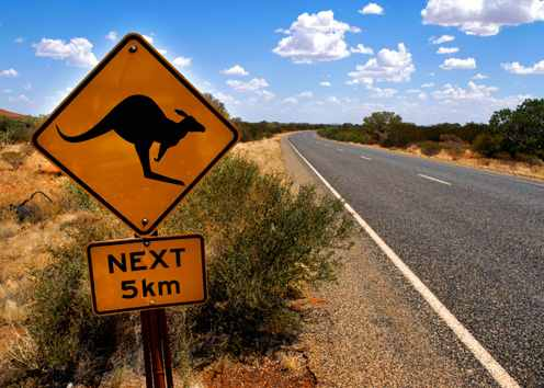 01-cairns-kangaroo-sign-next-to-the-highway-australia_tcm19-16894.jpg
